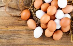 Confira 8 benefícios do ovo para a sua saúde