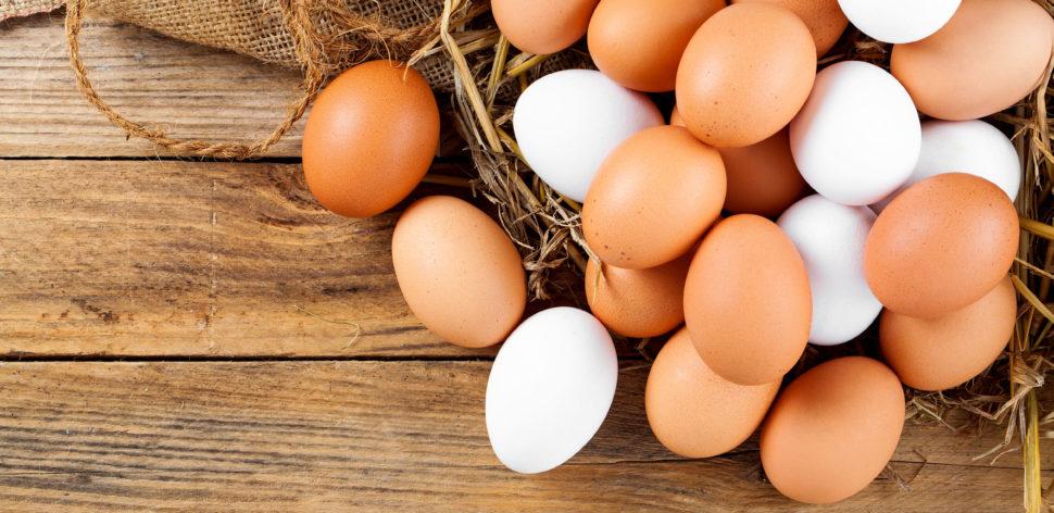 Confira 8 benefícios de comer ovos para a sua saúde