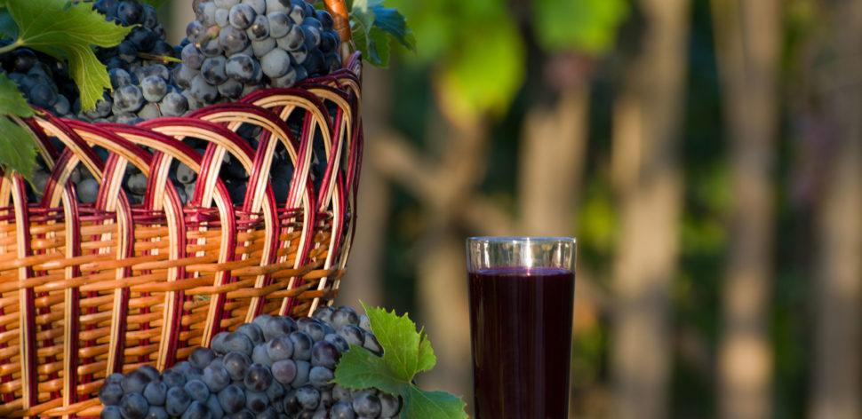 Sucos de uva integrais: quais são as melhores opções?
