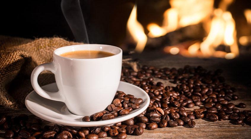 Impurezas do café vão de pelos de roedores a insetos