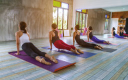 A yoga pode contribuir para sua saúde física e mental