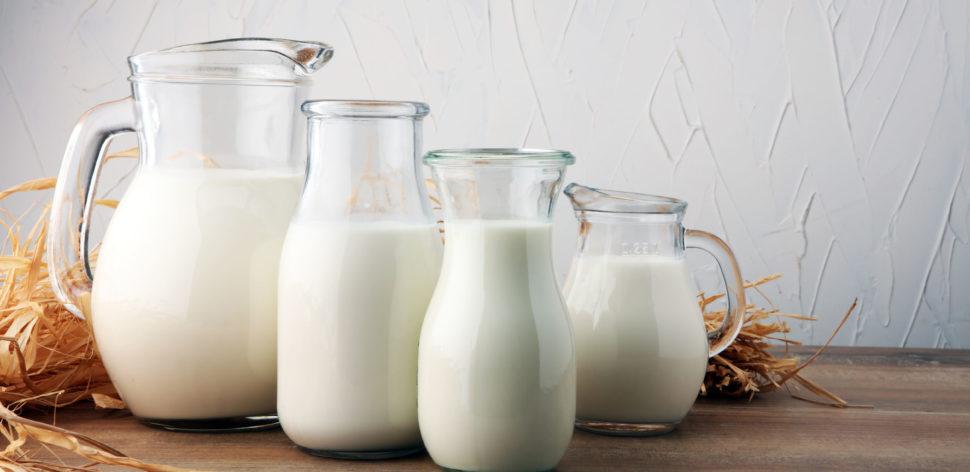 Qual é o melhor leite integral? A PROTESTE conta para você