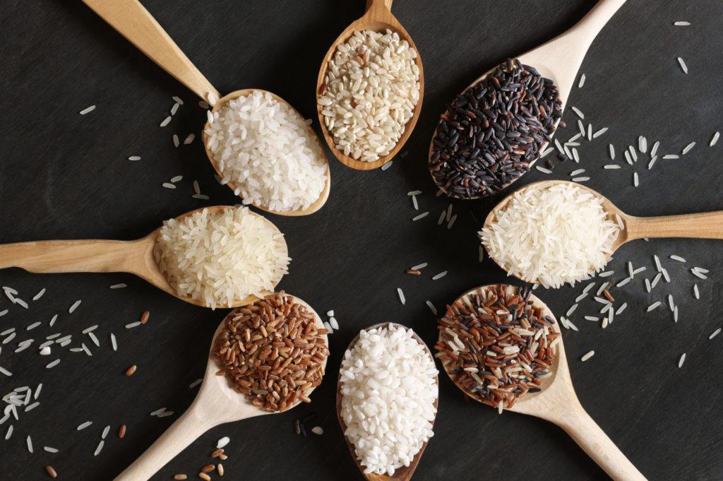 variedade de arroz