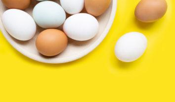 Confira o resultado: PROTESTE analisou bactérias e toxinas nos ovos